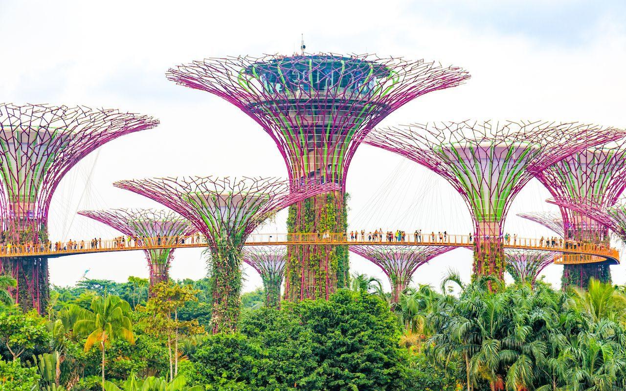Diversity matters in Singapur