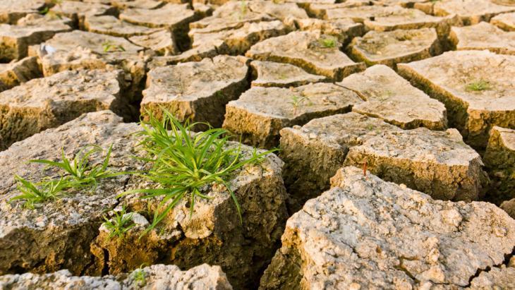 Ausgetrocknet: Mit System Thinking gegen die Klimakrise